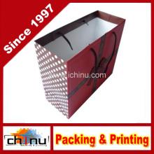 Art Paper Bag (2212)
