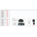 Wechselstrom-Antriebssystem für Elektrofahrzeug oder Boot
