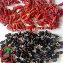Дикие черные ягоды Goji оптом
