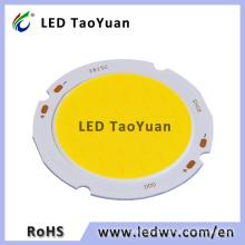 30W COB LED Chip Diode