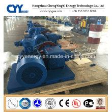 Cyyp 68 Ununterbrochener Service Großer Durchfluss und hoher Druck LNG Liquid Oxygen Stickstoff Argon Multiserise Kolbenpumpe