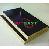 marine plywood,construction plywood,film faced plywood