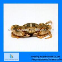 Fournisseur en gros de crabe de boue