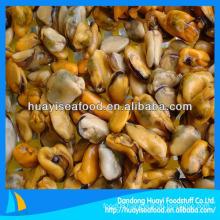 fresh good quality vacuum mussel meat