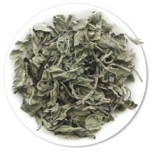 Té de hierbabuena de menta verde menta seca de la salud natural Hojas de menta secas