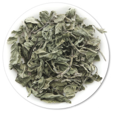 Folhas de hortelã secas secas de chá de ervas hortelã pimenta verde hortelã-pimenta natural