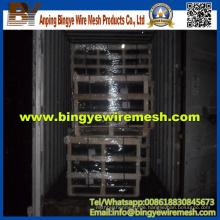 Chicken Wire Netting / Sechskant-Mesh-Mesh (Fabrikherstellung)