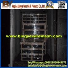 Red de alambre de pollo / malla de alambre hexagonal (fábrica de fabricación)