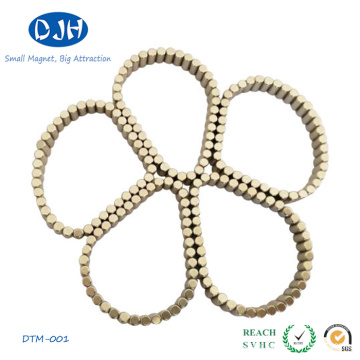 Professional Sintered Magnetic Material NdFeB Magnet for Toy (DTM-001)