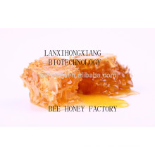 High quality natural linden honey