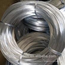 Traitement de surface galvanisé et Electro Galvanized Galvanized Technique Electro Zinc Coated Iron Wire usine vente directe