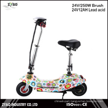 250W Motor Power Mini Electrical Scooter with 24V Battery 2wheels