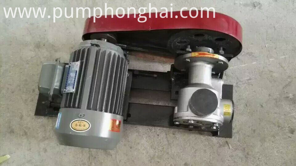 electric cooking oil pump