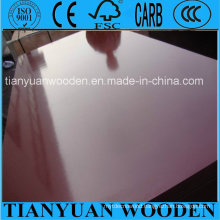 Waterproof Shuttering Plywood for Building Construction, Shandong, China
