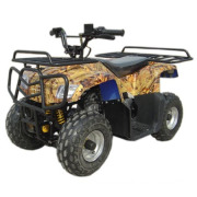 110CC ATV Quad (Hl-A420)