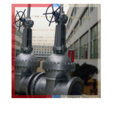 """Gear Operated Wcb RF End Gate Valve in 24""""-300lb"""