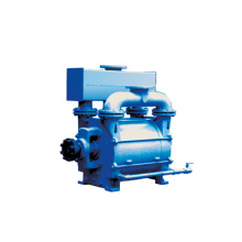 Top Quality Vacuum Pump by Anhui Sanlian