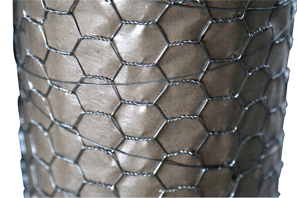 Hot Dipped Galvanized Hexagonal Netting