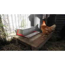 New Arrival Poultry Farm Nice Quality Automatic Chicken Treadle Feeder Treadle Chook Broiler Feeder Trough