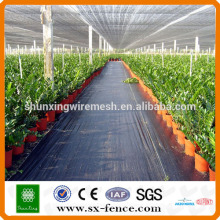 Greenhouse telhado sombra rede
