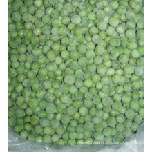 Guisante verde congelado