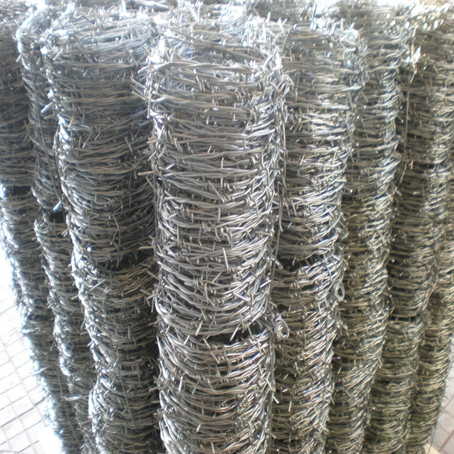 barbed wire mesh15
