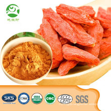 Factory supply top quality wolfberry extract powder goji berry powder