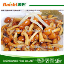 314ml/550ml/580ml canned nameko mushroom in brine in tin