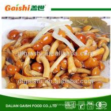 314ml / 550ml / 580ml enlatados nameko cogumelo em salmoura em lata