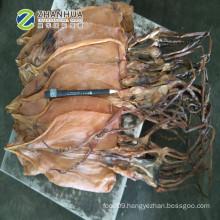 dried squid no salt illex squid