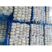 Chinesische normale weiße Knoblauch 200g / 4kg Mesh Bag