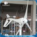 Générateur de vent à alternateur à aimant permanent DELIGHT DE-AW01