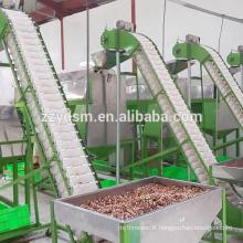 machine automatique de décorticage de noix de cajou