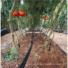 PE Drip Irrigation Pipe for Drip Irrigation System