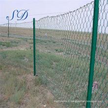 Clôture verte de lien de chaîne de champ enduit par PVC d'exportation