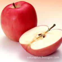 Apple Juice Powder-Polyphenols