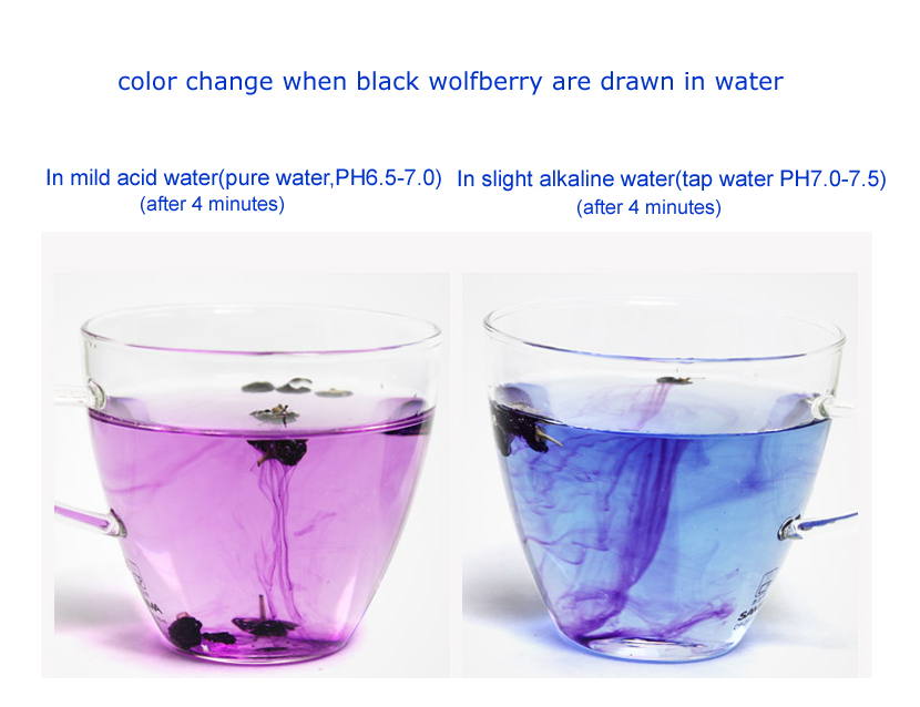 color change when black goji are drawn in water