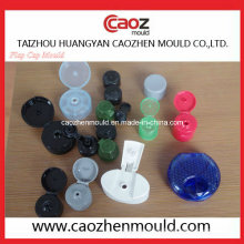Plastic Injection Shampoo Flasche / Flap Cap Mold