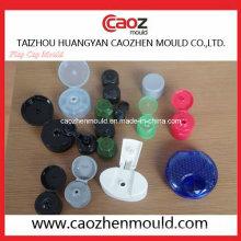 Plastic Injection Shampoo Garrafa / Flap Cap Molde