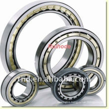 Single row Cylindrical Roller Bearing N1022-K-M1-SP