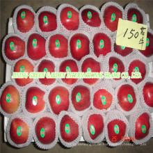 Huaniu Apfel
