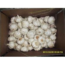 2015 Новый урожай Чистый белый чеснок (4,5 см, 5,0 см, 5,5 см, 6,0 см)