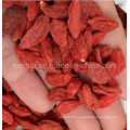 The King of Ningxia Organic Red Dry Goji Berries (Wolfberry)