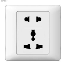Multi function and two pins socket