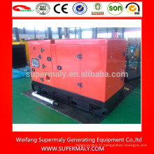 Prix du générateur diesel de 8kw-50kw avec les marques Yangdong