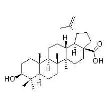 Ácido betulínico 472-15-1