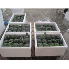 Brócoli fresco chino