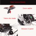 2017 36v350w 20''mini faltbare e-bike, elektrische bike made in china