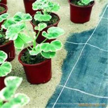 Tela del control de malas hierbas de la estera de la barrera de la mala hierba de la tela del control de la mala hierba