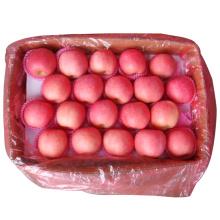 Nueva cosecha fresca FUJI Apple